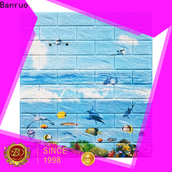 Banruo professional decorative plastic wall panels company for promotion